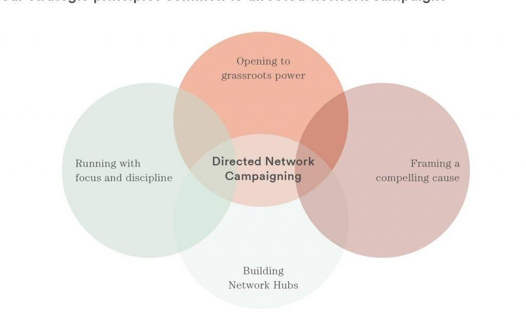 The four principles of directed network campaigns
